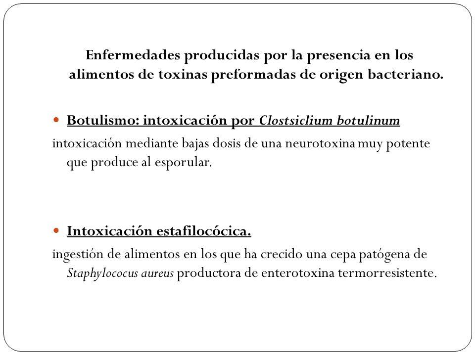 Enfermedades producidas por la presencia en los alimentos de toxinas preformadas de origen bacteriano.