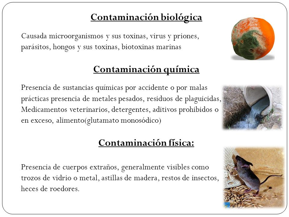 Contaminación biológica Contaminación química Contaminación física: