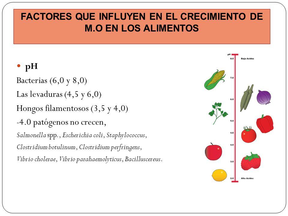 FACTORES QUE INFLUYEN EN EL CRECIMIENTO DE
