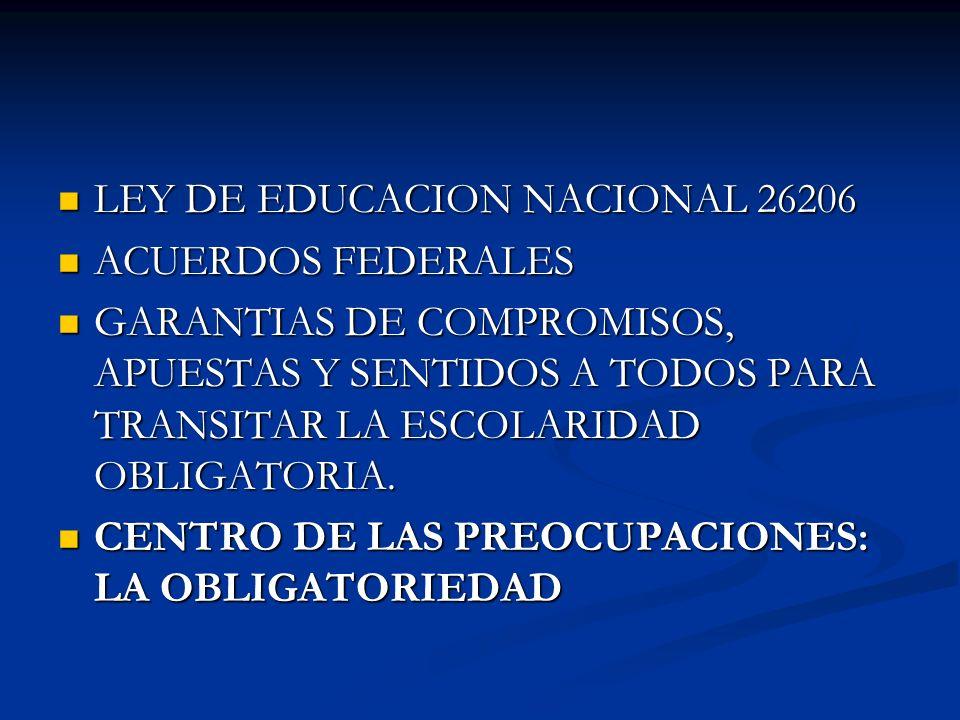 LEY DE EDUCACION NACIONAL 26206