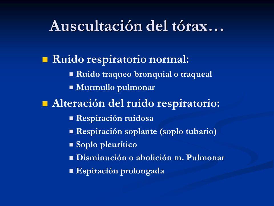 Auscultación del tórax…