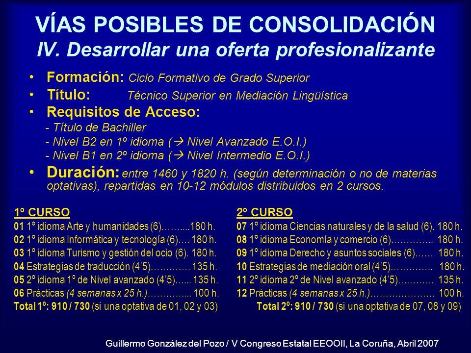VÍAS POSIBLES DE CONSOLIDACIÓN IV