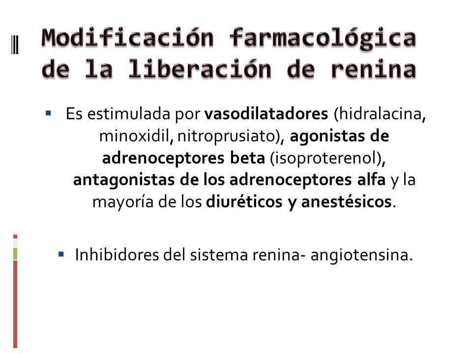 Modificación farmacológica de la liberación de renina