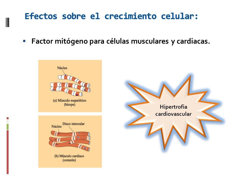 Efectos sobre el crecimiento celular: