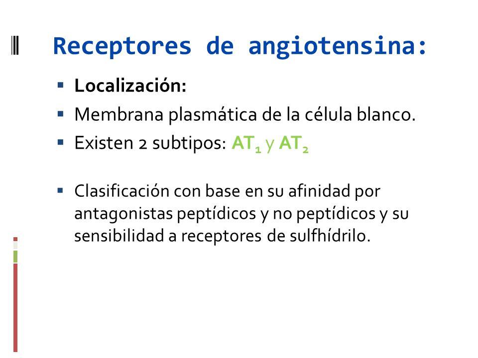 Receptores de angiotensina: