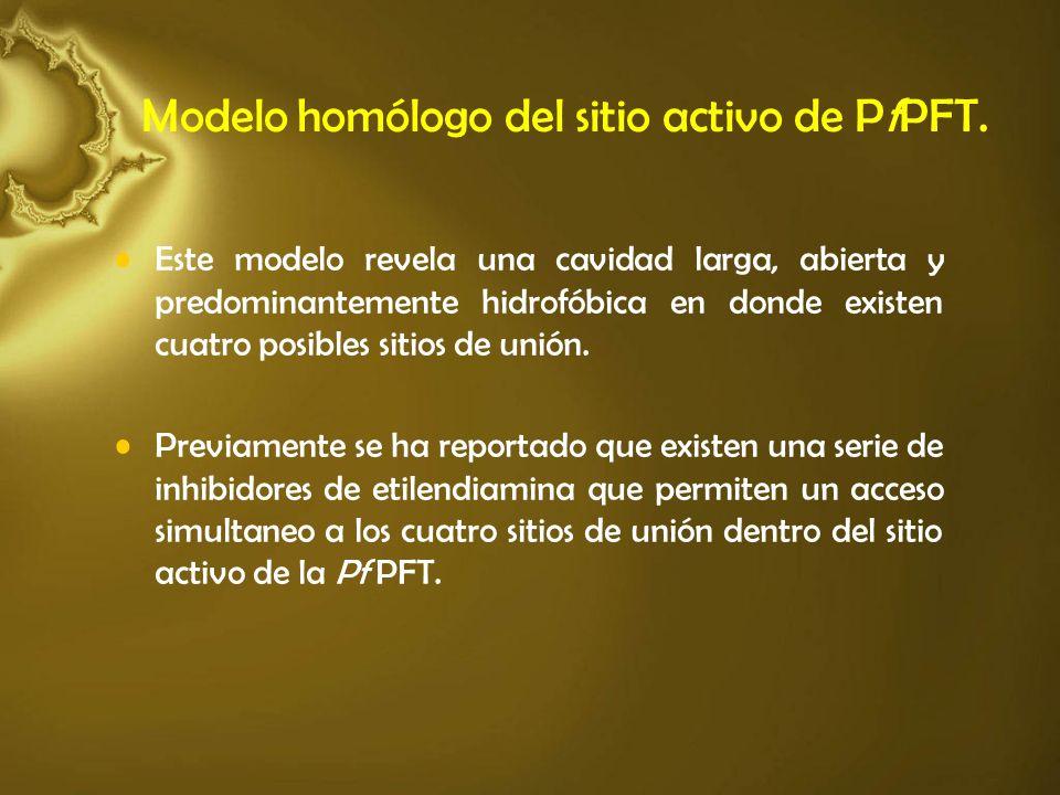 Modelo homólogo del sitio activo de PfPFT.