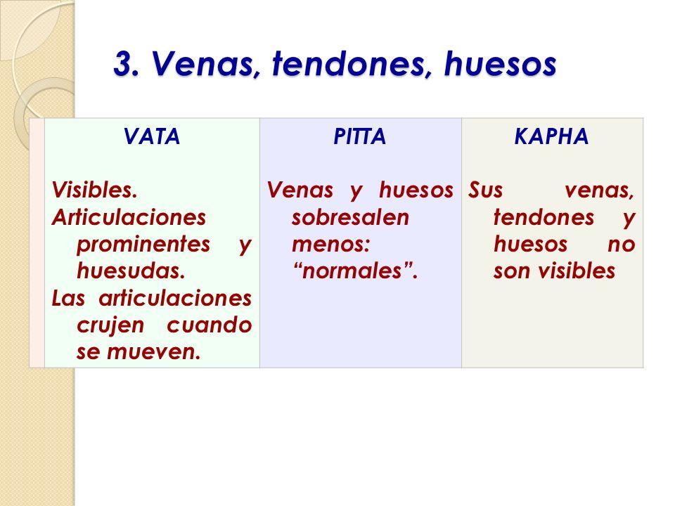 3. Venas, tendones, huesos VATA Visibles.