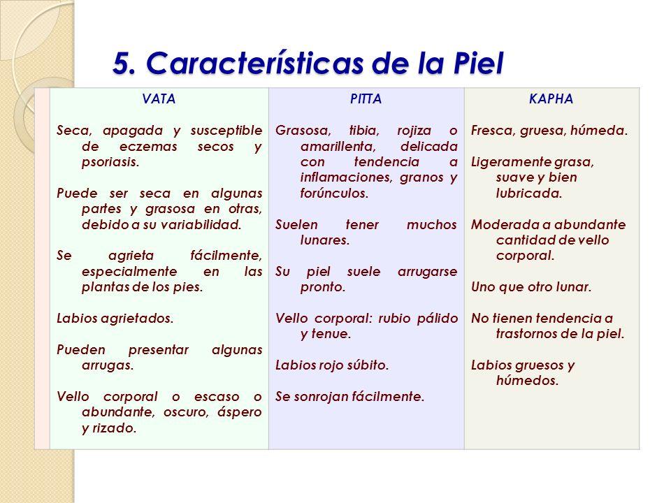 5. Características de la Piel