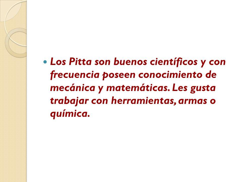 Los Pitta son buenos científicos y con frecuencia poseen conocimiento de mecánica y matemáticas.