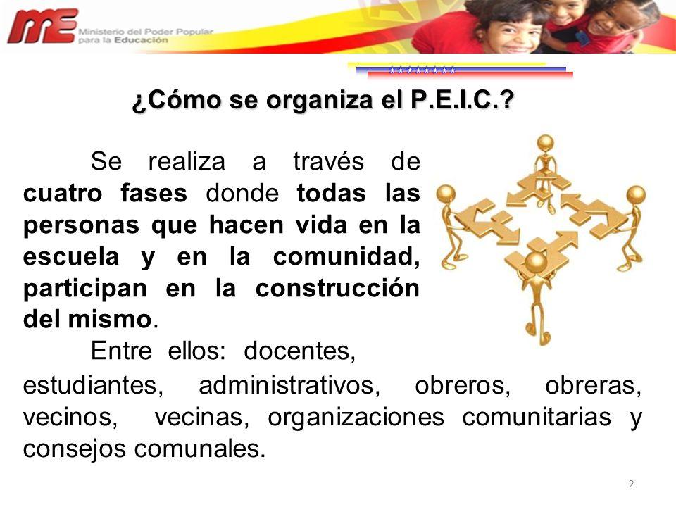 ¿Cómo se organiza el P.E.I.C.