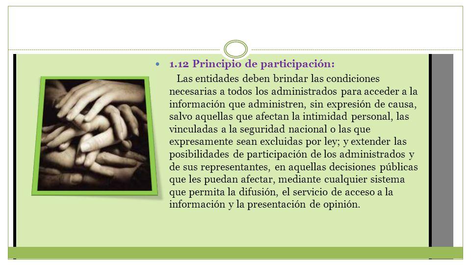 1.12 Principio de participación: