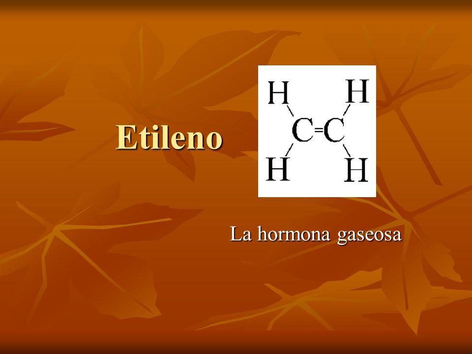 Etileno La hormona gaseosa La más simple de todas las hormonas