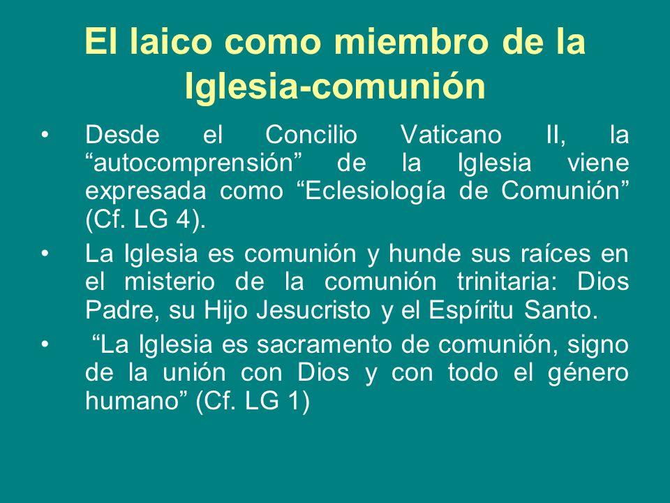 El laico como miembro de la Iglesia-comunión