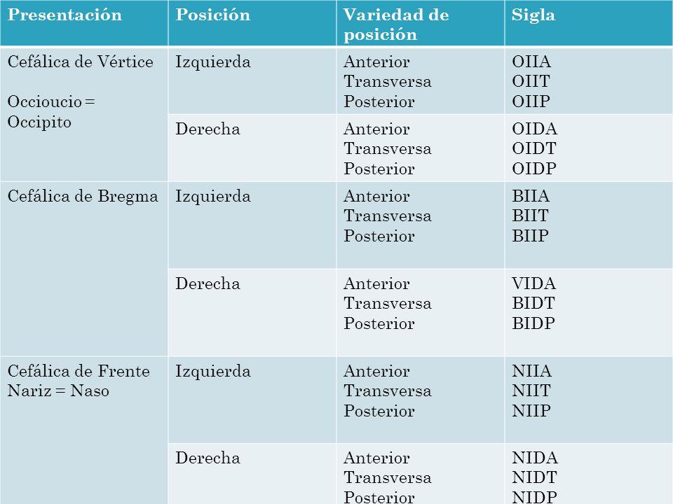 Presentación Posición. Variedad de posición. Sigla. Cefálica de Vértice. Occioucio = Occipito. Izquierda.