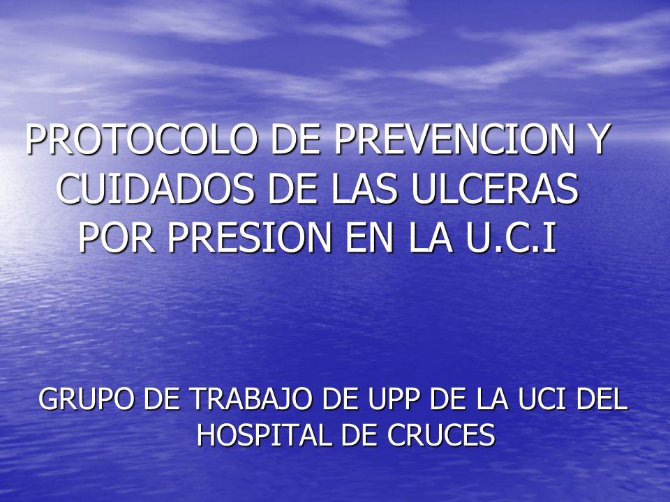 GRUPO DE TRABAJO DE UPP DE LA UCI DEL HOSPITAL DE CRUCES
