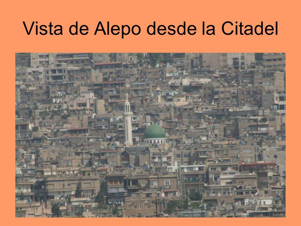 Vista de Alepo desde la Citadel