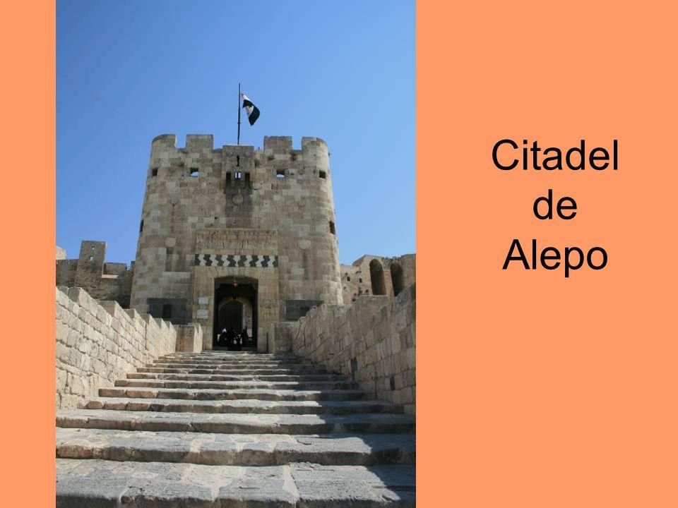 Citadel de Alepo