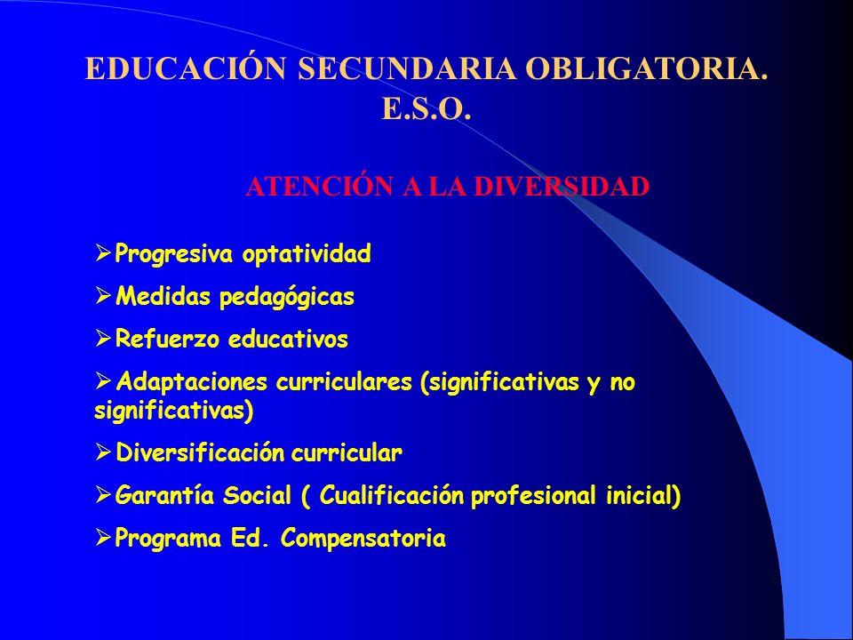 EDUCACIÓN SECUNDARIA OBLIGATORIA. E.S.O. ATENCIÓN A LA DIVERSIDAD