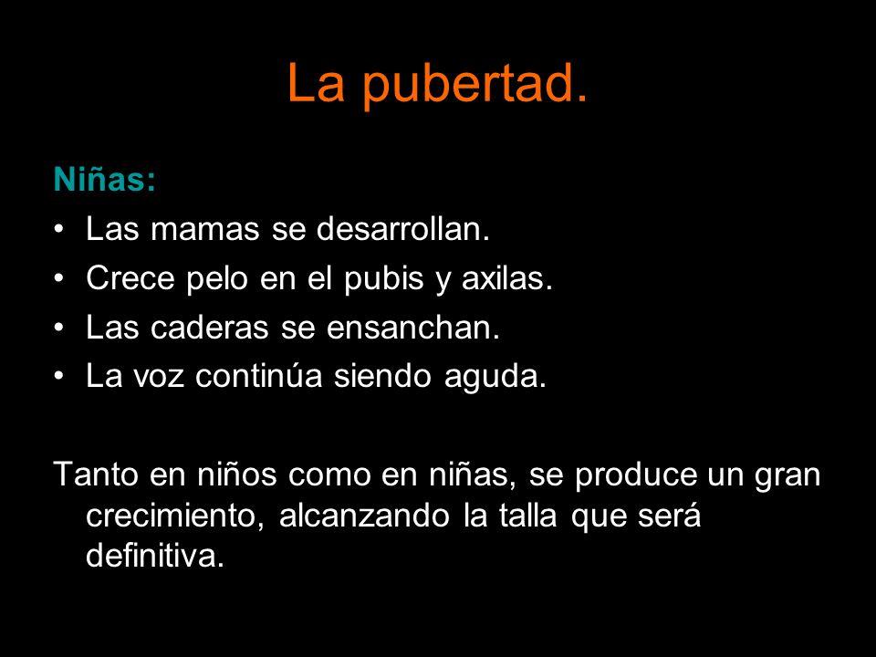 La pubertad. Niñas: Las mamas se desarrollan.