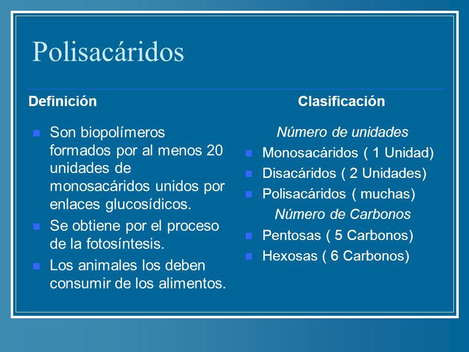 Polisacáridos Definición. Clasificación. Son biopolímeros formados por al menos 20 unidades de monosacáridos unidos por enlaces glucosídicos.