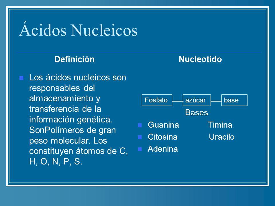 Ácidos Nucleicos Definición. Nucleotido. Bases. Guanina Timina. Citosina Uracilo.