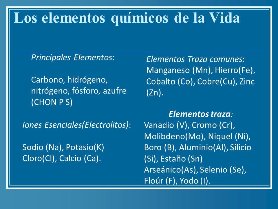 Los elementos químicos de la Vida