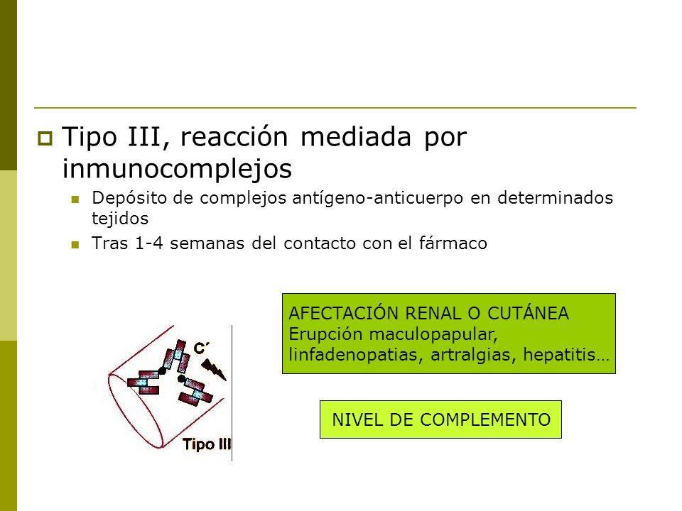 Tipo III, reacción mediada por inmunocomplejos