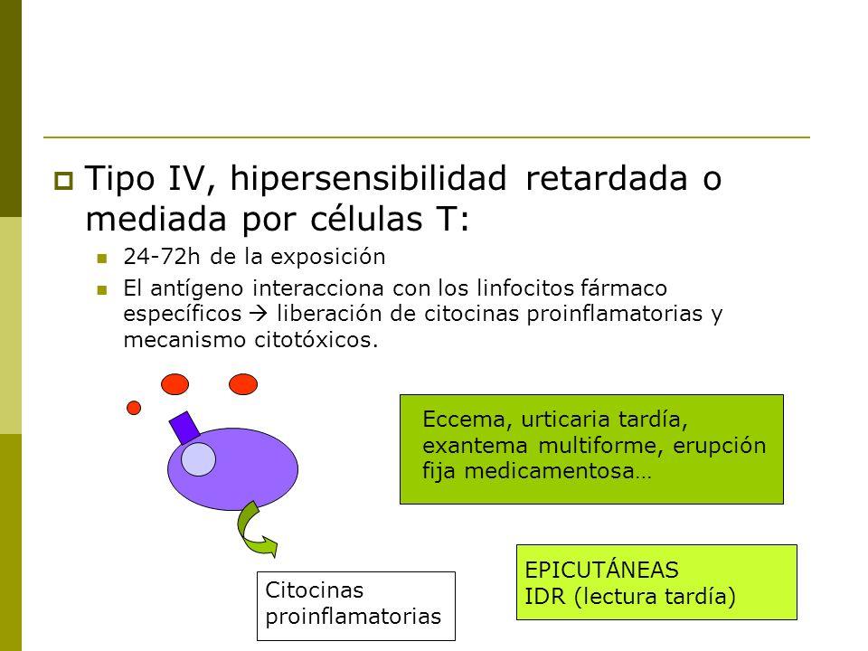 Tipo IV, hipersensibilidad retardada o mediada por células T: