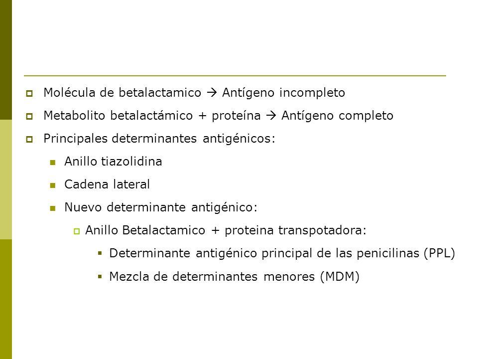 Molécula de betalactamico  Antígeno incompleto