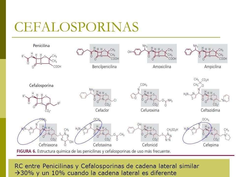 CEFALOSPORINAS RC entre Penicilinas y Cefalosporinas de cadena lateral similar 30% y un 10% cuando la cadena lateral es diferente.