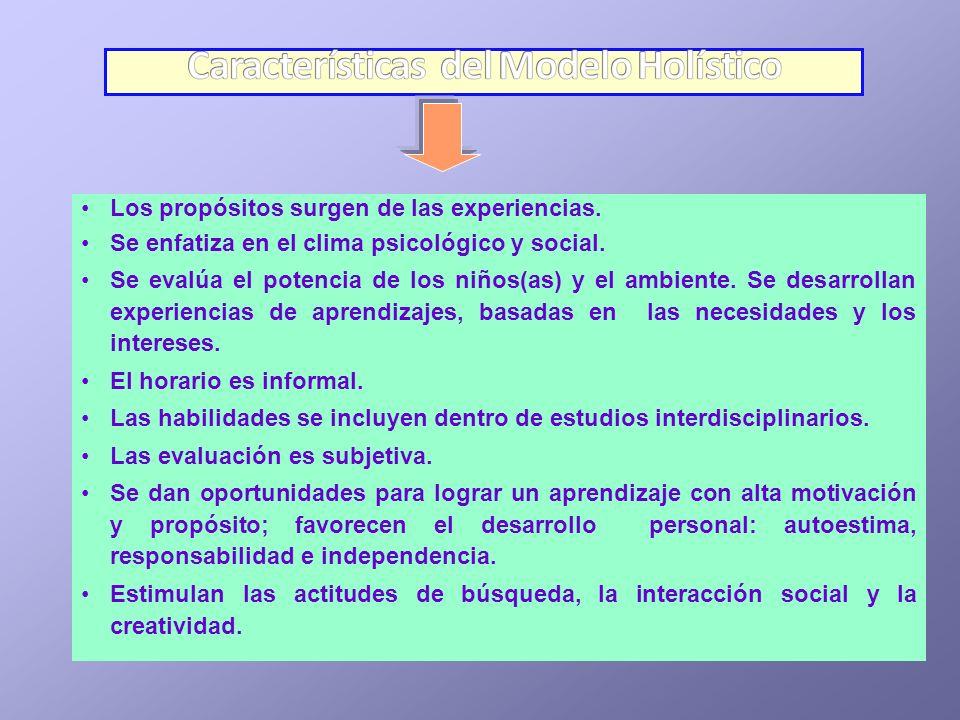 Características del Modelo Holístico