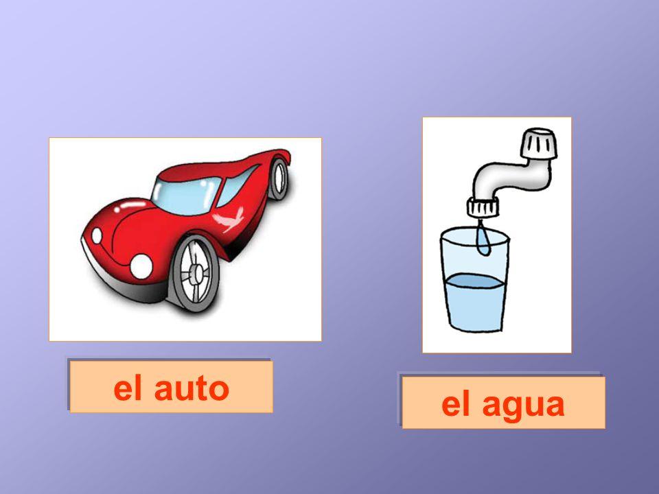 el auto el agua