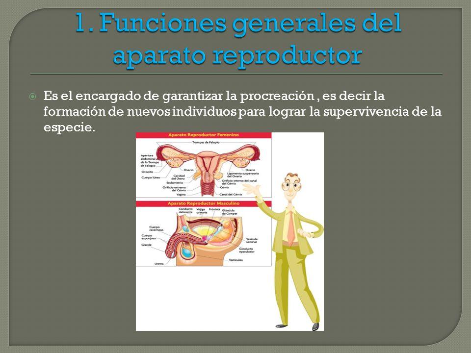 Hermosa Descargar La Anatomía Del Infierno Componente - Imágenes de ...