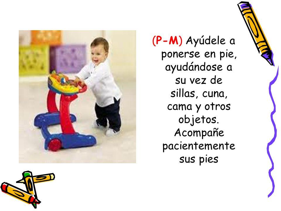 (P-M) Ayúdele a ponerse en pie, ayudándose a su vez de sillas, cuna, cama y otros objetos.