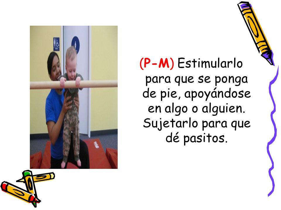 (P-M) Estimularlo para que se ponga de pie, apoyándose en algo o alguien.