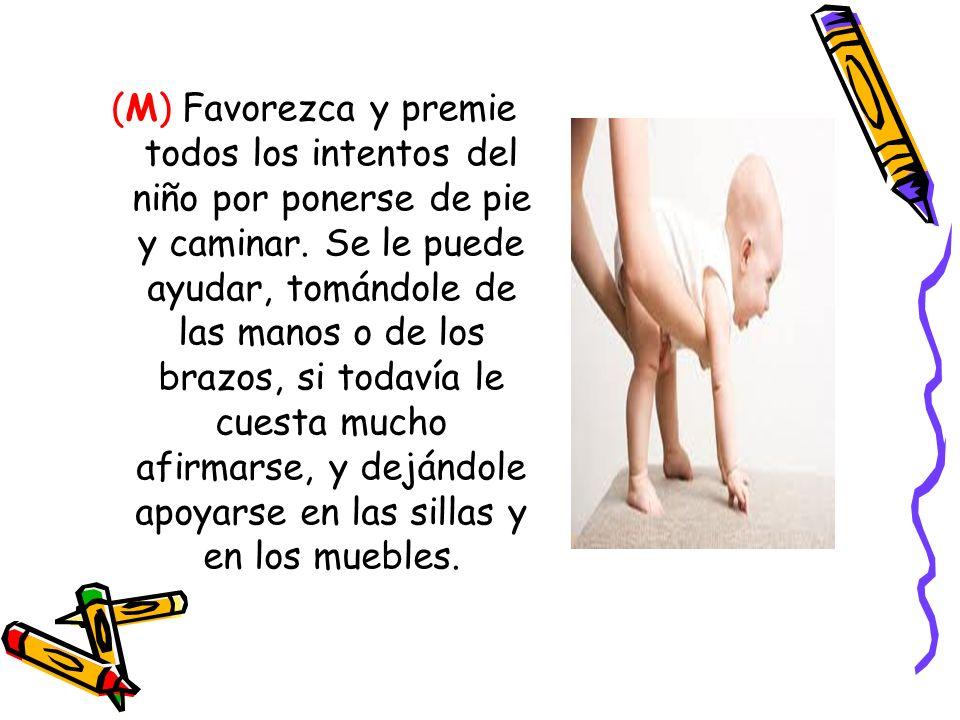 (M) Favorezca y premie todos los intentos del niño por ponerse de pie y caminar.