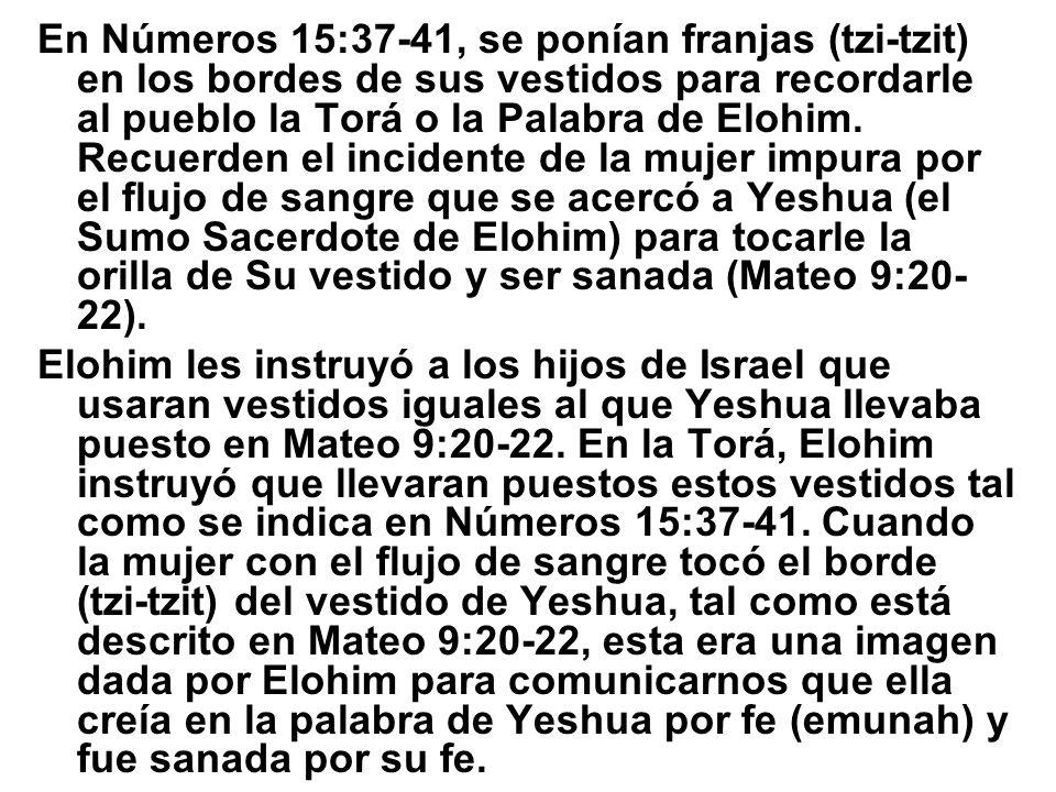 En Números 15:37-41, se ponían franjas (tzi-tzit) en los bordes de sus vestidos para recordarle al pueblo la Torá o la Palabra de Elohim. Recuerden el incidente de la mujer impura por el flujo de sangre que se acercó a Yeshua (el Sumo Sacerdote de Elohim) para tocarle la orilla de Su vestido y ser sanada (Mateo 9:20-22).
