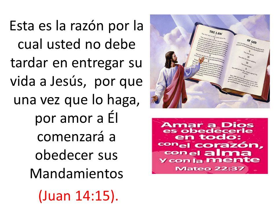 Esta es la razón por la cual usted no debe tardar en entregar su vida a Jesús, por que una vez que lo haga, por amor a Él comenzará a obedecer sus Mandamientos