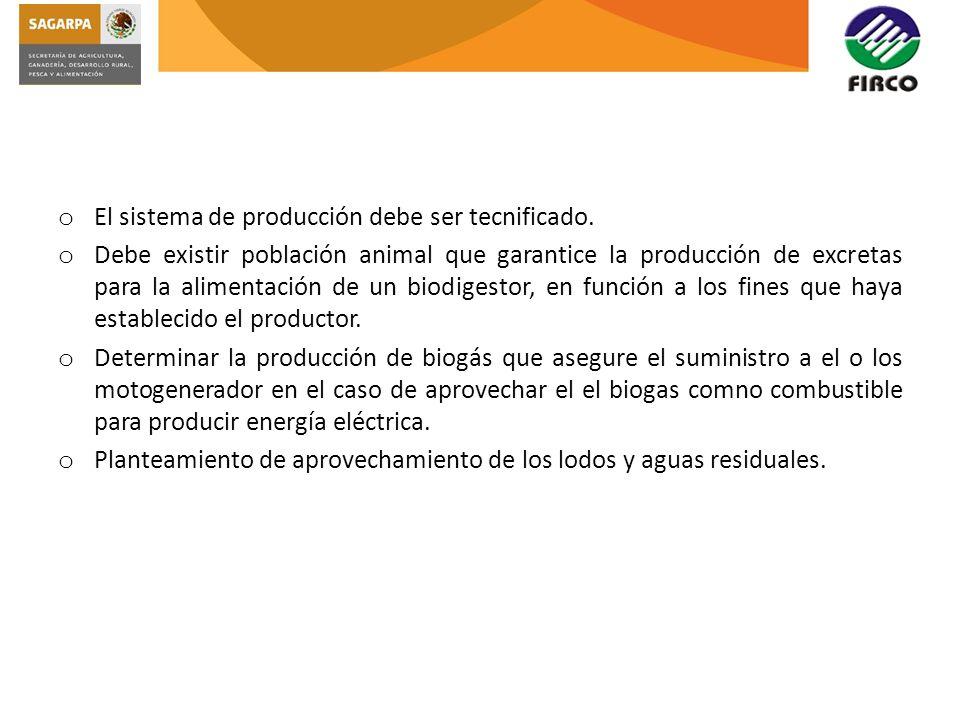 El sistema de producción debe ser tecnificado.