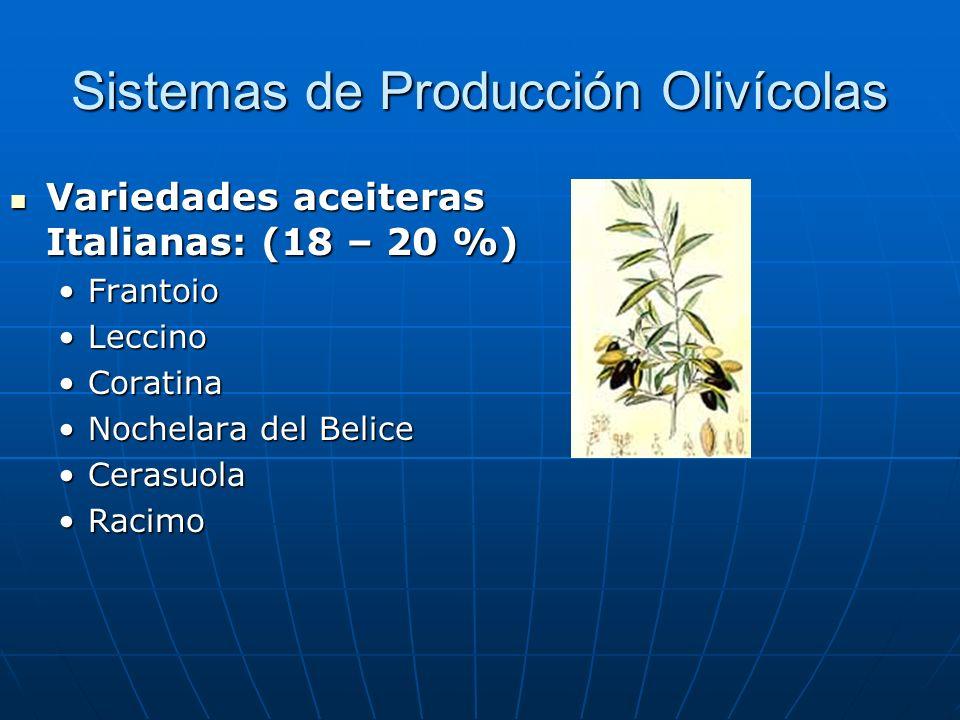 Sistemas de Producción Olivícolas