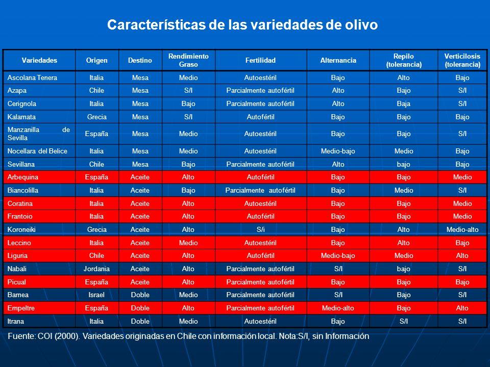 Características de las variedades de olivo