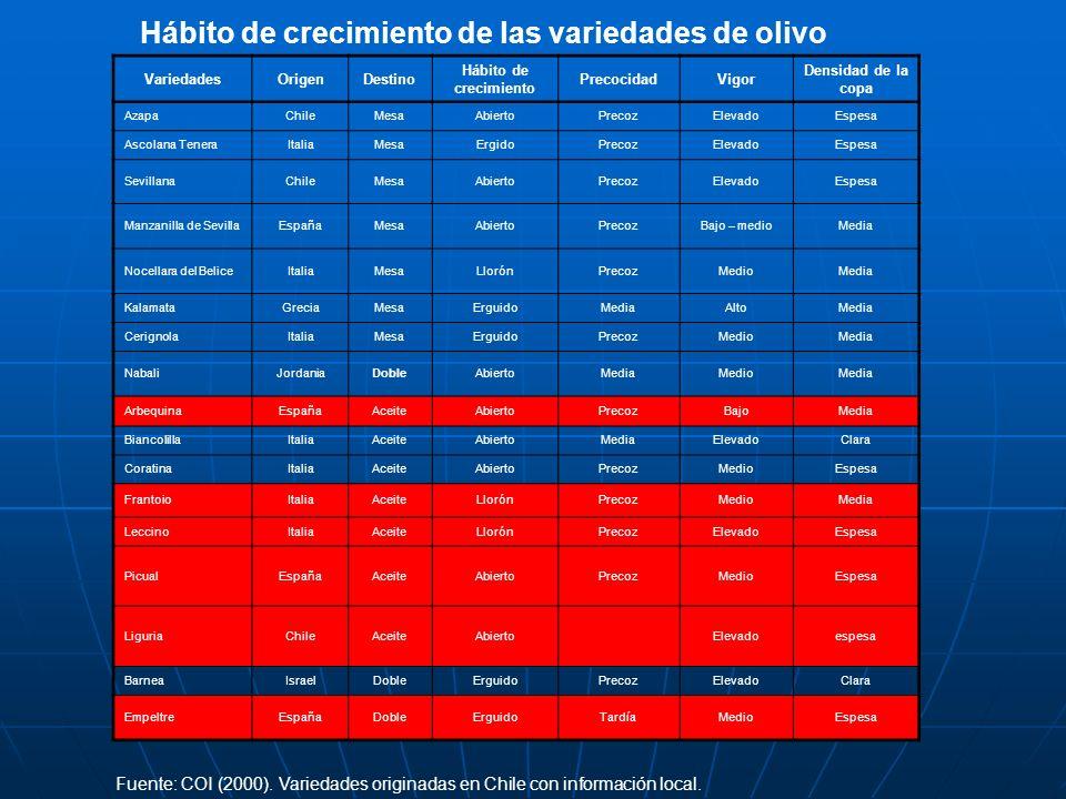 Hábito de crecimiento de las variedades de olivo