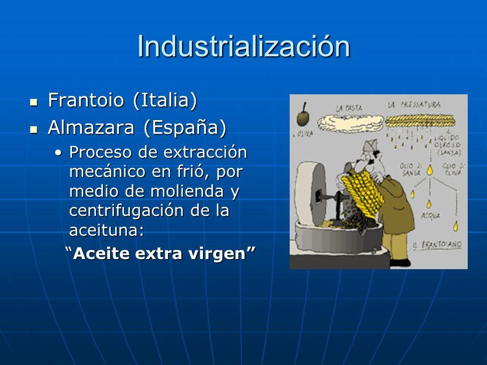 Industrialización Frantoio (Italia) Almazara (España)