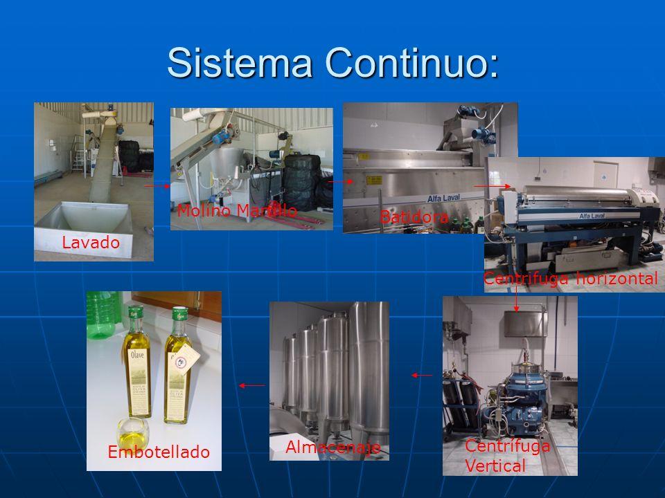 Sistema Continuo: Molino Martillo Batidora Lavado