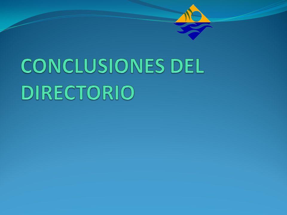 CONCLUSIONES DEL DIRECTORIO