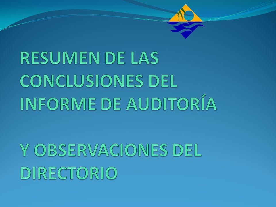 RESUMEN DE LAS CONCLUSIONES DEL INFORME DE AUDITORÍA Y OBSERVACIONES DEL DIRECTORIO