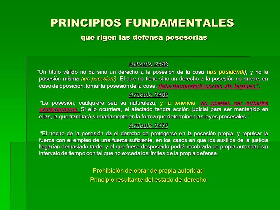 PRINCIPIOS FUNDAMENTALES que rigen las defensa posesorias