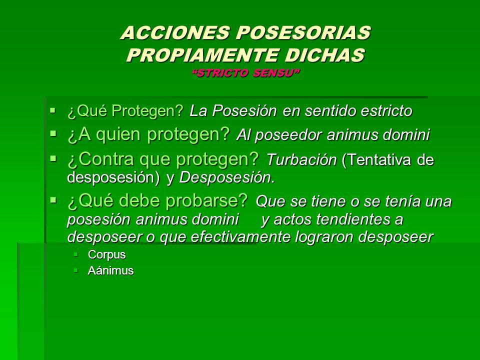 ACCIONES POSESORIAS PROPIAMENTE DICHAS STRICTO SENSU