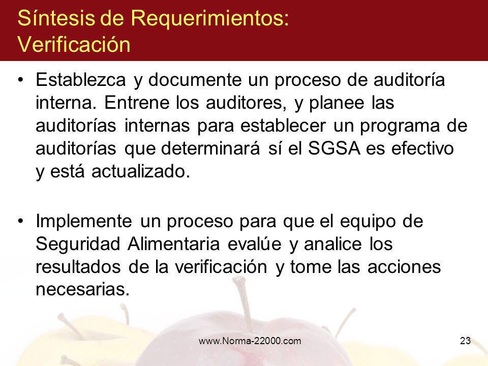 Síntesis de Requerimientos: Verificación