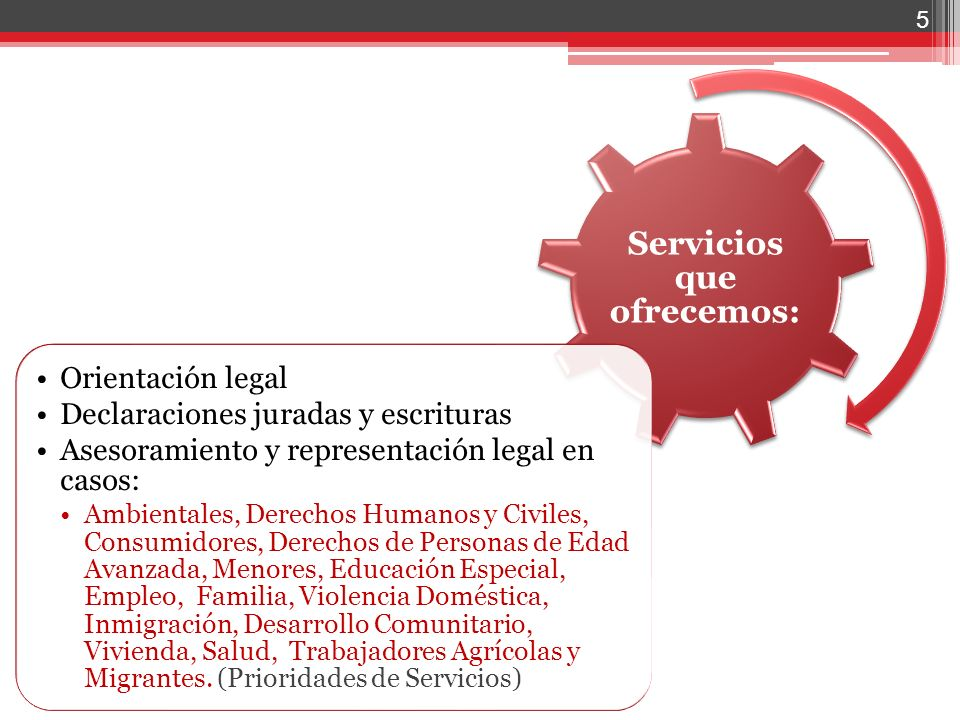 Servicios que ofrecemos: